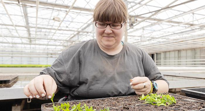 Zierpflanzenbau und Florantas - Haus Freudenberg - Unsere Arbeitsbereiche